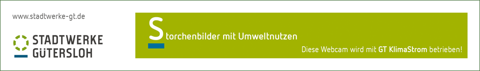 Partner_Stadtwerke_GT_big.png